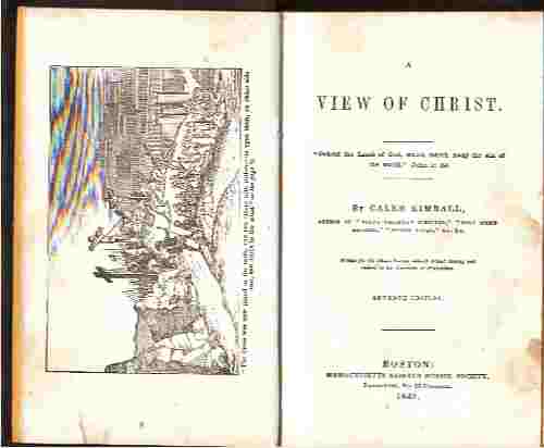 Image for A view of Christ