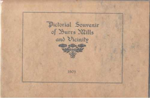Image for Pictorial Souvenir of Burrs Mills and Vicinity