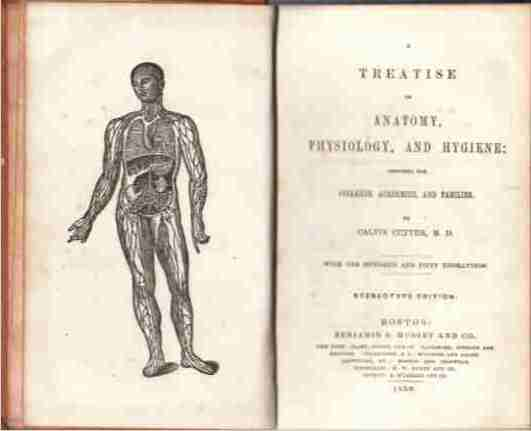Image for A Treatise on Anatomy, Physiology, and Hygiene Designed for Colleges, Academies, and Families. With One Hundred and Fifty Engravings. Sterotype Edition.