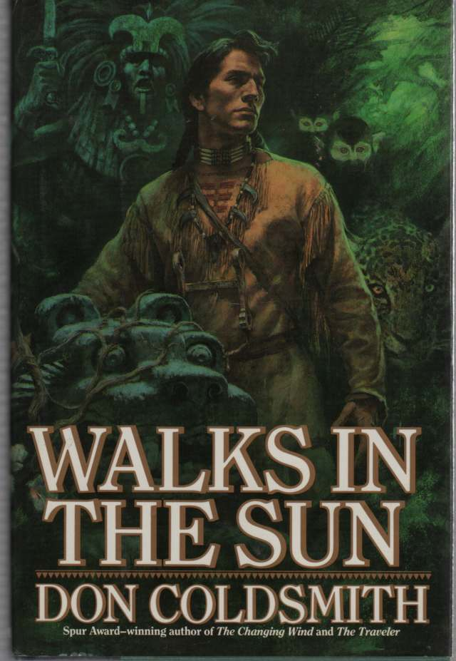 Image for Walks in the Sun