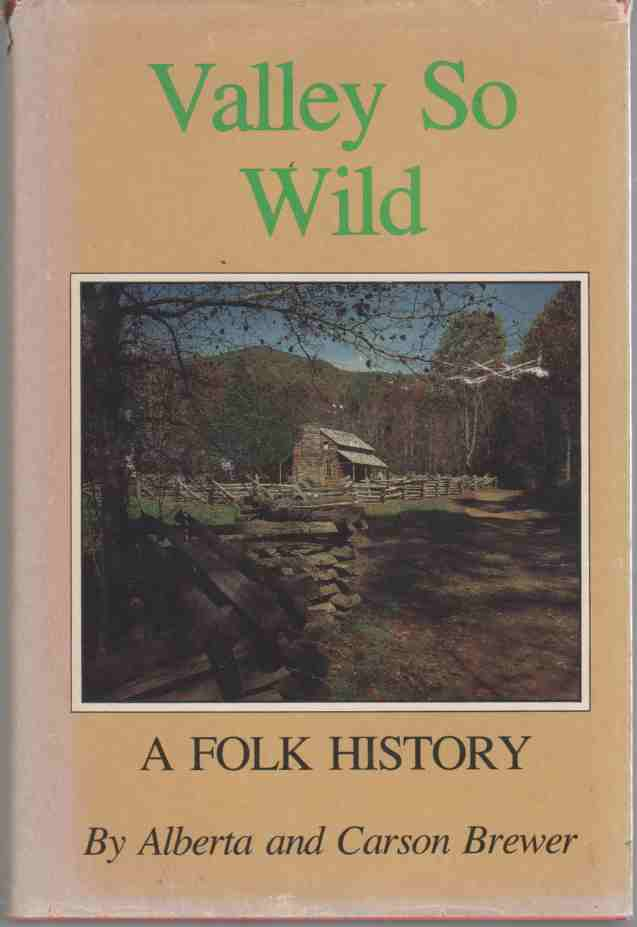 Image for Valley So Wild (A Folk History)